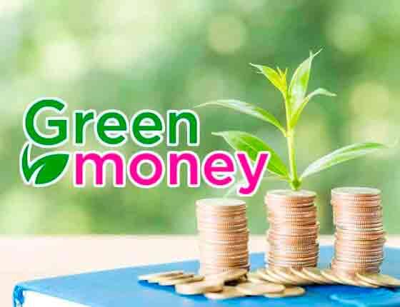 Взять займ МФО Грин Мани онлайн